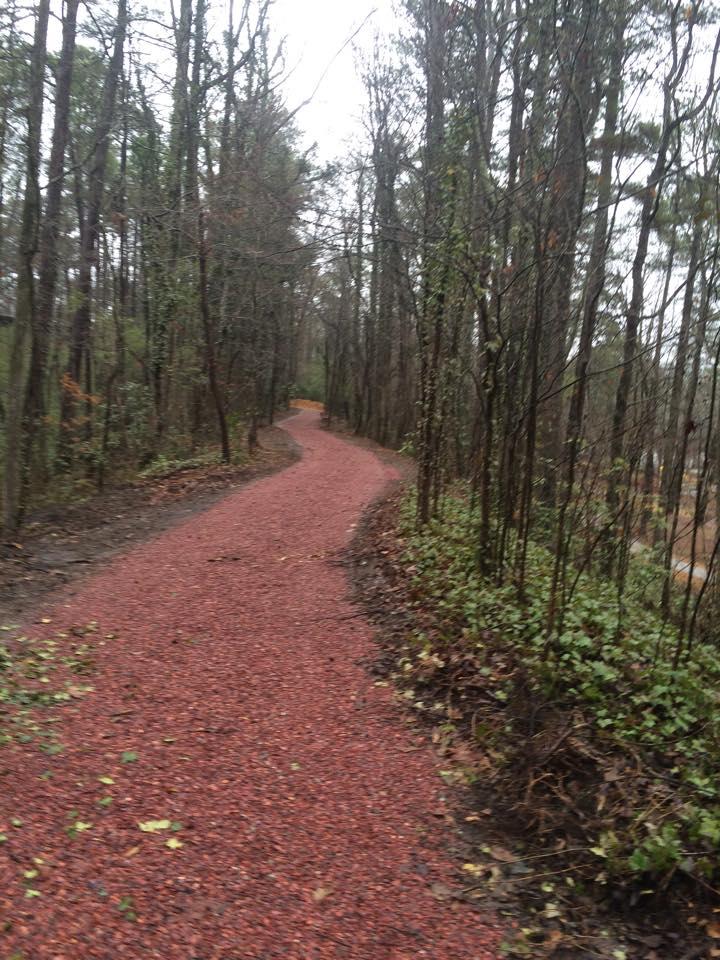 Nature Trail in Alabama